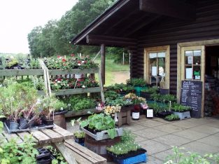 To Let Farm Shop & Pyo, Hampshire
